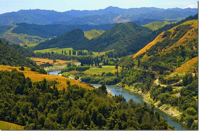 whanganui-river-road-new-zealand